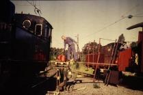 Kolning i Neglinge 1996