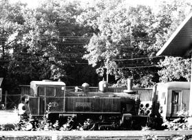 SSnJ 7 1